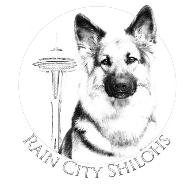 Rain City Shilohs